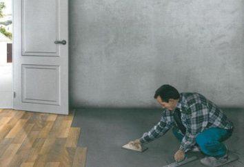 Co lepsze jastrych w nowym budynku, w garażu? Co lepsze dla ciepłej podłogi wylewki wody?