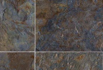 Artvin podłoga – co to jest? Artvin piętro: Opinie Cena