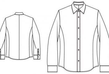 Patrón de la camisa de un hombre: construcción de una base, modelos