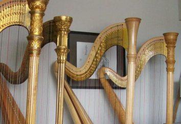 instrument de musique à cordes – les types et l'histoire de l'événement