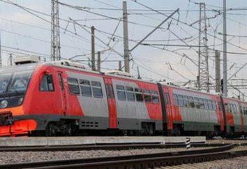 Zug 463. Samara – Adler: Bewertungen, Richtungen und Features