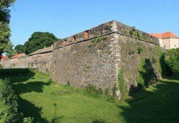 Użhorod Castle: historia, adres, zdjęcia