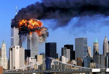 Który obejmuje działalność terrorystyczną? Rodzaje, funkcje, obiekty,