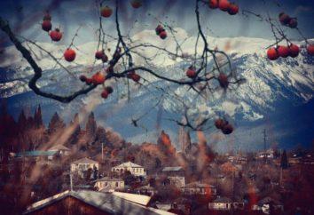 Abkhazia inverno: foto, recensioni. Cosa vedere in Abkhazia in inverno?