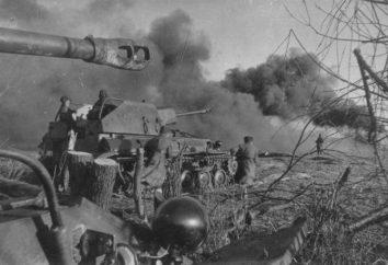 La liberación de Konigsberg de los nazis en la Segunda Guerra Mundial: la fecha de los participantes. La lucha por la liberación de Konigsberg, un frente? Medalla por la liberación de Konigsberg
