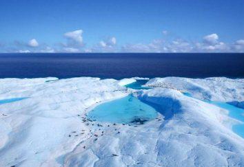 ¿Cuáles son el Ártico y en la Antártida? El límite del Ártico. La zona del Ártico. La posición geográfica del Ártico
