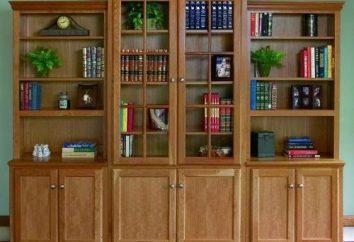 Jak wybrać szafki na książki?