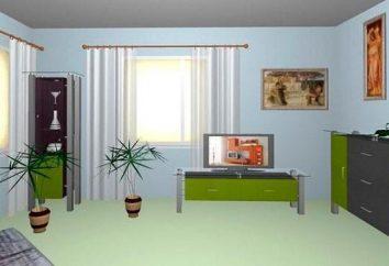 Program do projektowania w planowaniu apartamentami i naprawy. Projektowanie i tworzenie koncepcji projektu