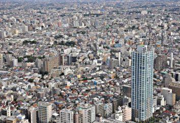 Tokyo: la popolazione. Densità di popolazione a Tokyo