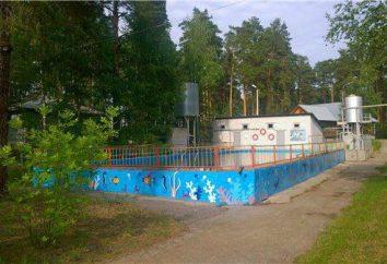 """""""Dzerzhinets"""" – Kinder-Gesundheits-Camp, Balakhna: Beschreibung, Fotos, Bewertungen"""