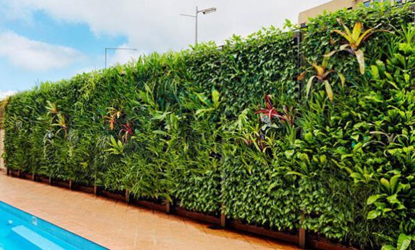 les - Comment Faire Un Jardin Vertical