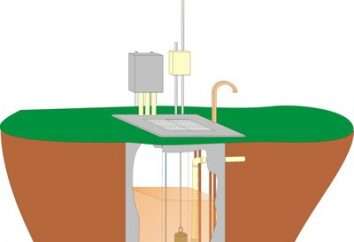 Pumpstationen für Brunnen: Auswahl Feinheit