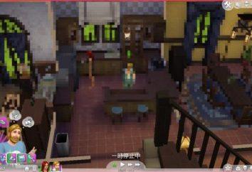 """""""Sims-4"""": comentários. Como instalar os Sims 4"""