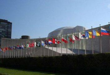 Quel est l'emblème de l'ONU?