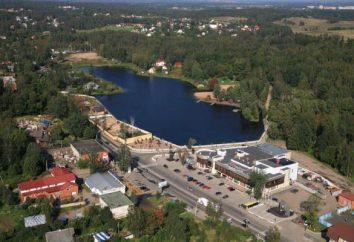 lac Koltushskoe – un endroit idéal pour les loisirs et la pêche (région de Leningrad)