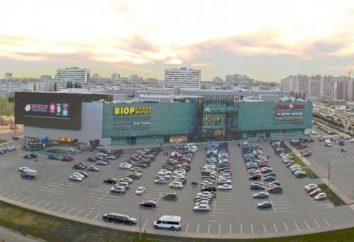 """SEC """"Arena"""" (Voronezh) como uma cidade componente social"""