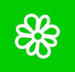 programa de ICQ: qué es y por qué es necesario