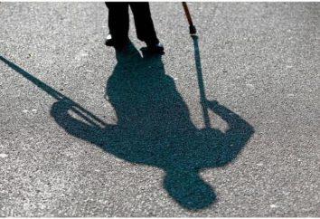 """Il programma statale """"ambiente disponibile"""" per il periodo 2011-2015 per le persone con disabilità"""