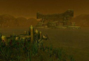 """""""Templo Sumergido"""" – el calabozo en el juego, """"El mito de Warcraft"""""""