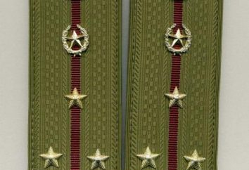 alças de ombro – tenente. tenente – correias. foto