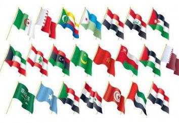 A bandeira árabe como um dos atributos dos símbolos de estado