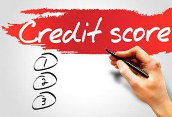 Model punktacji do oceny zdolności kredytowej kredytobiorcy