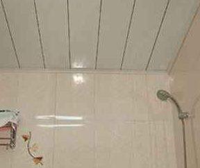 Rack i zębnika sufit w łazience – jak dokonać właściwego wyboru?