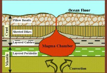 ¿Cuál es el elemento principal, que constituye la corteza terrestre?