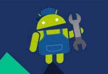 """Jak włączyć tryb awaryjny do """"Android""""? Szczegółowe instrukcje"""