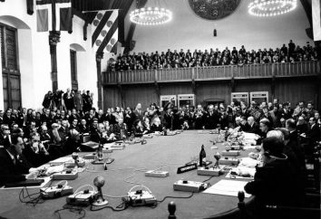 Die Haager Konferenz hat Regeln der Kriegsführung etabliert