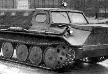 GAZ-47 – maszyna, która nie potrzebuje dróg