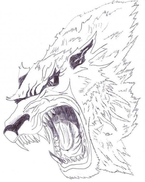 Wilkołak Tatuaż Ze Znaczeniem