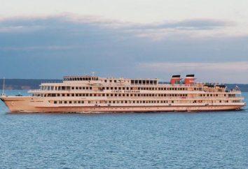 """""""Semen Budenny"""" navio: fotos e comentários"""