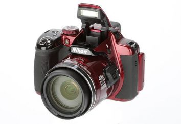 Nikon Coolpix P520 – modello di revisione, recensioni dei clienti e degli esperti