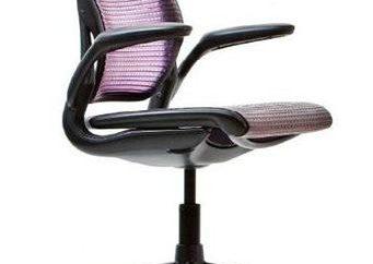 Jak wybrać krzesło biurowe? Porady i opinie na temat producentów