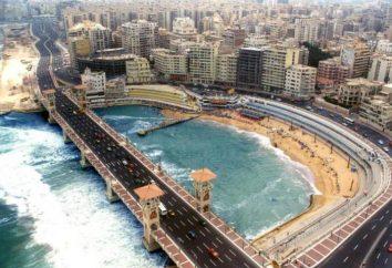Alexandria Hotel: opis, informacje zwrotne. Wczasy w Egipcie