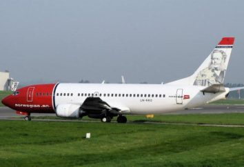 "Norwegian Air Shuttle ( «Norwegian Airlines""): Los vuelos están disponibles para todos"