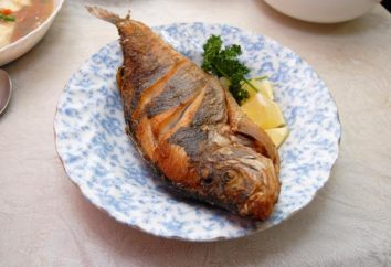 Pesce Peled: ricette