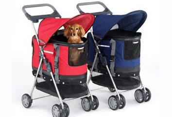 Wózek dla psów – luksus czy jest to konieczne?