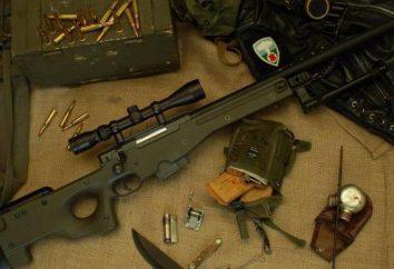 Rifle AWP: fotos, características
