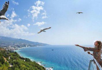 """L'hôtel """"Yalta-Intourist 4 *"""": avis, photos, adresse, téléphone"""