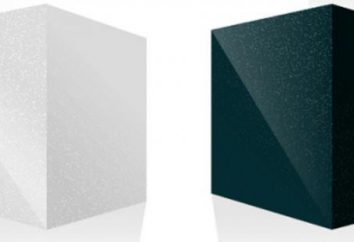 """métodos de pruebas de software y los comparan. Método de ensayo de la prueba de """"recuadro negro"""" y el método de """"caja blanca"""""""