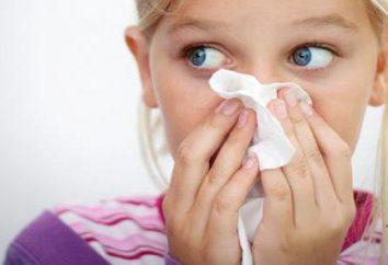 Parainfluenza u dzieci: przyczyny, objawy i leczenie. Wirus Parainfluenza u dziecka: cechy leczenia