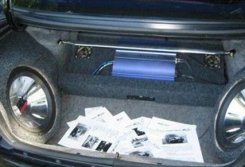 Jak skonfigurować subwoofera w samochodzie? Opis procesu stopniowego