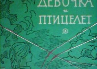 "Vladimir Kiselev ""Girl e ptitselet"": sintesi per capitolo"