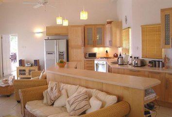 El diseño de la cocina-salón de 20 metros cuadrados. m. Cocina de diseño de 20 metros cuadrados. m
