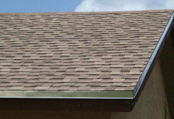"""Dach """"Shinglas"""": Anleitung für die Installation, Technologieberatung und Bewertungen"""