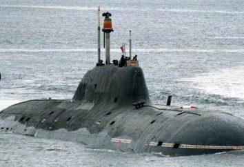 Projekt 971 – seria atomowych okrętów podwodnych wielofunkcyjnych: Specyfikacje
