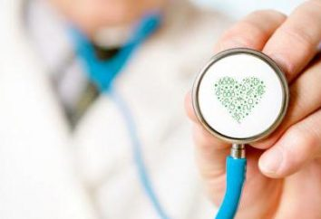 Seguro médico voluntário para os cidadãos estrangeiros – as sutilezas do projeto