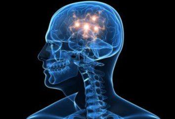 Co jest zmiana ogniskowej mózgu substancji dystroficznym? Przyczyny i objawy ogniskowego mózgu zmiany materii dystroficznym